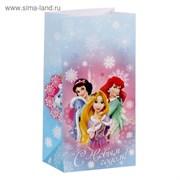 """Пакет подарочный без ручек """"С Новым годом!"""", Принцессы, 10 х 19,5 х 7 см"""