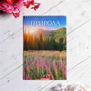 """Календарь перекидной, пружина """"Природа"""" 2019 год, 17х25см   3543640"""
