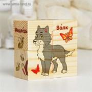"""Кубики деревянные """"Лесные животные"""", набор 4 шт."""