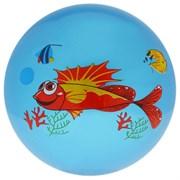 (1015566) Мяч детский Дельфинчики 25 см, 60 гр, цвет синий   3575059