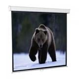 (76769)  Экран настенный ScreenMedia Economy 153x153 (SEM-1102)